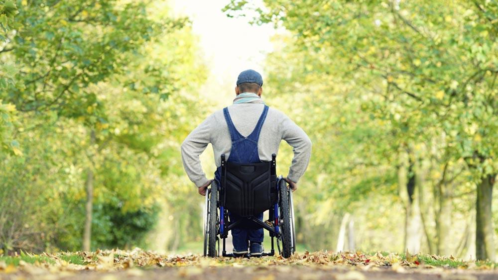 Wheelchair user in nature.jpg